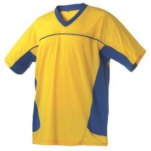 Gul/Blå Matchtröja Sverige Supporter