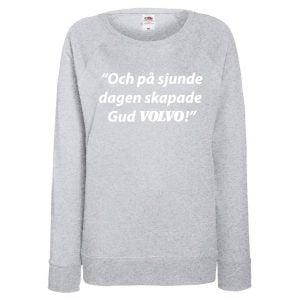 Grå Volvotröja På Sjunde Dagen