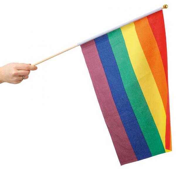 Regnbågsflagga Handflagga Regnbåge Pride
