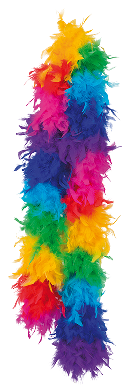 Regnbågsboa Fjäderboa Regnbåge Pride