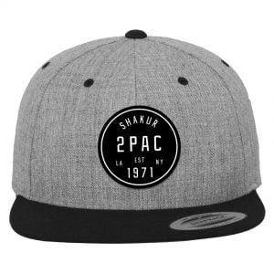 Grå/Svart Keps Snapback Tupac Shakur 1971